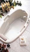 Vinson Combination Whirlpool and Air Bath Tub